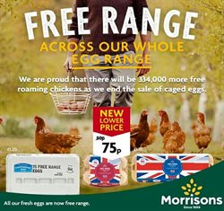Morrisons catalogue in Birmingham ( 23 days left )