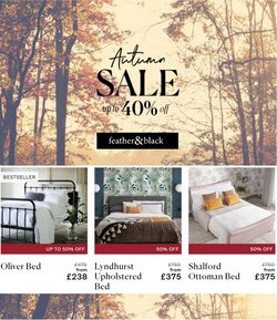 Feather & Black offers in the Feather & Black catalogue ( Expires tomorrow)