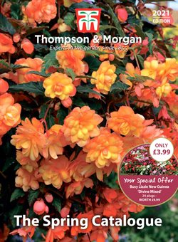 Garden & DIY offers in the Thompson & Morgan catalogue in Newport ( More than a month )