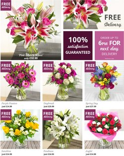 Home & Furniture offers in the iflorist catalogue ( Published today  )
