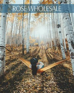 Rose Wholesale offers in the London catalogue