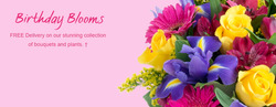 Flying Flowers coupon ( 3 days left )