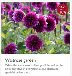Waitrose offers in the Glasgow catalogue
