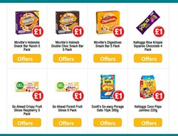 Scott offers in the Poundland catalogue in London
