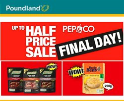 Poundland offers in the York catalogue