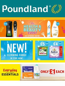 Poundland catalogue ( 8 days left )