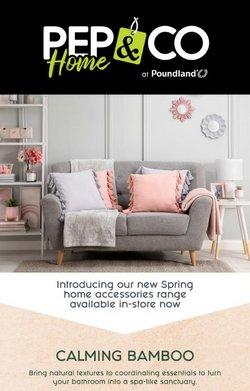 Poundland catalogue ( 8 days left)
