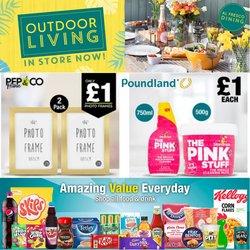 Poundland catalogue ( 11 days left)
