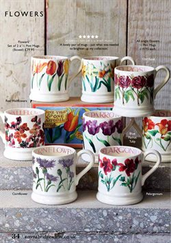 Flowers offers in the Emma Bridgewater catalogue in London