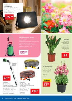 Top offers in the Lidl catalogue in Widnes