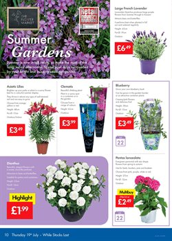 Garden offers in the Lidl catalogue in Aberdeen