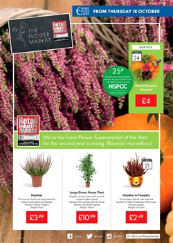 Garden offers in the Lidl catalogue in Liverpool