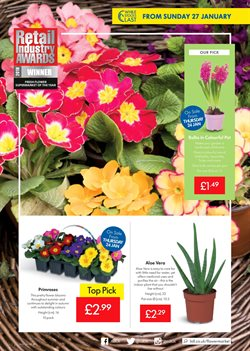 Garden offers in the Lidl catalogue in London