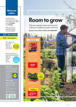 Garden offers in the Lidl catalogue in Royal Leamington Spa