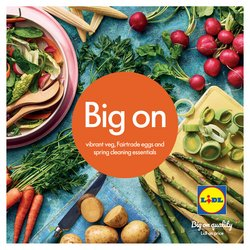 Lidl catalogue in Birmingham ( More than a month )