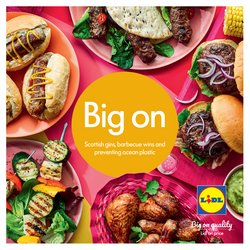 Lidl catalogue in Swansea ( More than a month )