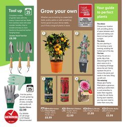 Supermarkets offers in the Lidl catalogue ( 20 days left )