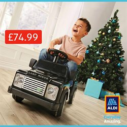 Christmas offers in the Aldi catalogue in Hackney
