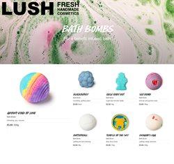 Lush catalogue ( Expires today )