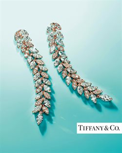 Luxury brands offers in the Tiffany & Co. catalogue in Warrington ( 17 days left )