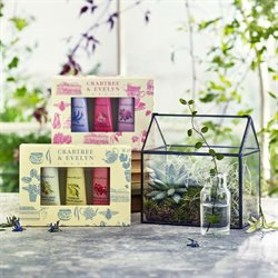 Pharmacy, Perfume & Beauty offers in the Crabtree & Evelyn catalogue in London ( 10 days left )