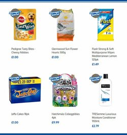 Food offers in the B&M Stores catalogue in Darlington