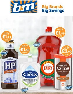 B&M Stores catalogue ( Expires tomorrow)