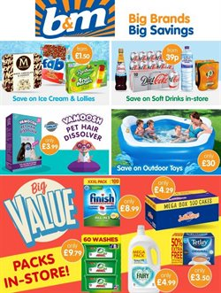 B&M Stores catalogue ( Expires tomorrow )