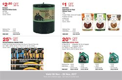 AA offers in the Costco catalogue in London