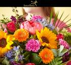 Interflora catalogue ( More than a month )