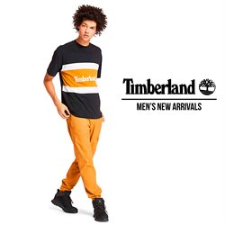 Timberland catalogue in Birkenhead ( More than a month )