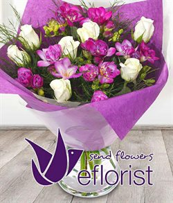 Eflorist offers in the London catalogue