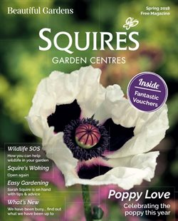 Garden & DIY offers in the Squires Garden Centres catalogue in Hammersmith