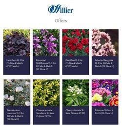 Hillier Garden Centres catalogue ( Expired )