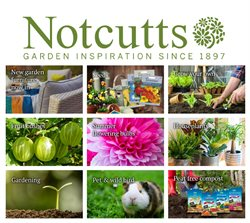 Notcutts Garden Centre catalogue ( Expired )