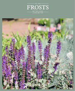 Garden & DIY offers in the Frosts Garden Centres catalogue ( 5 days left)