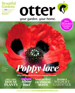 Garden & DIY offers in the Otter Nurseries catalogue in London