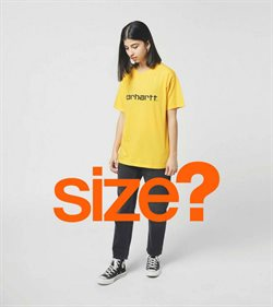 Size catalogue ( More than a month )