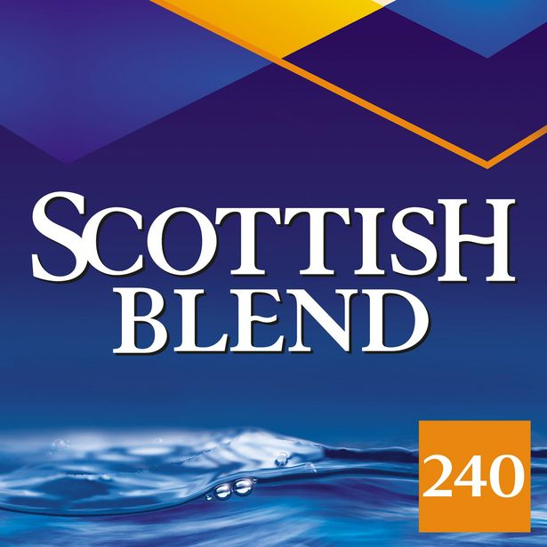 Scottish Blend Original Tea Bags 240 offer at £3.5