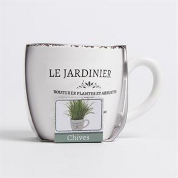 Bee's Seeds: Le Jardinier Herb Grow Set - Chives offer at £4.99
