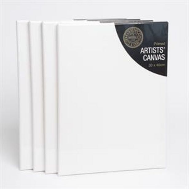 Canvas 30 x 40cm Pack of 4 offer at £5.16
