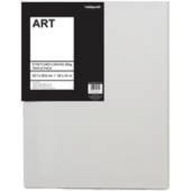 Stretched Canvas 45.7cm x 35.6cm 3 Pack offer at £10.5