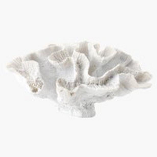 Coral TORLEK W20xL24xH11cm white offer at £11.99